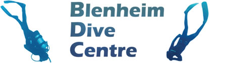 Client Profile For Blenheim Dive Centre By IBeFound Digital Marketing Division NZ