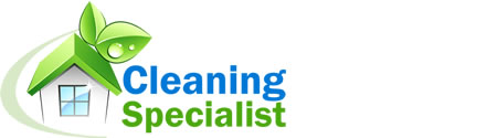 Client Profile For Cleaning Specialist By IBeFound Digital Marketing Division NZ